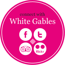 Connect with White Gables