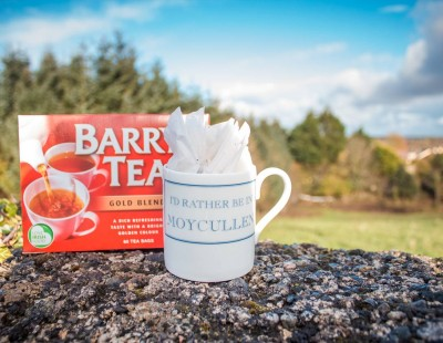 Mug and Barrys tea bags